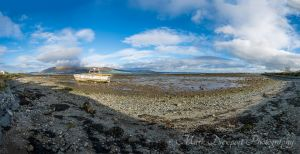 Carlingford Panorama
