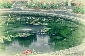 Pond, War Memorial Park, Dublin